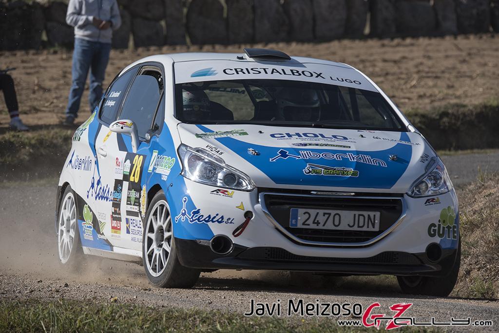 Rally_SanFroilan_JaviMeizoso_17_0117