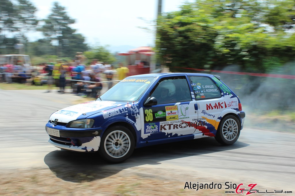 x_rally_sur_do_condado_97_20150307_1859387117