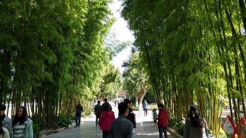 Cuihu (Green) Park