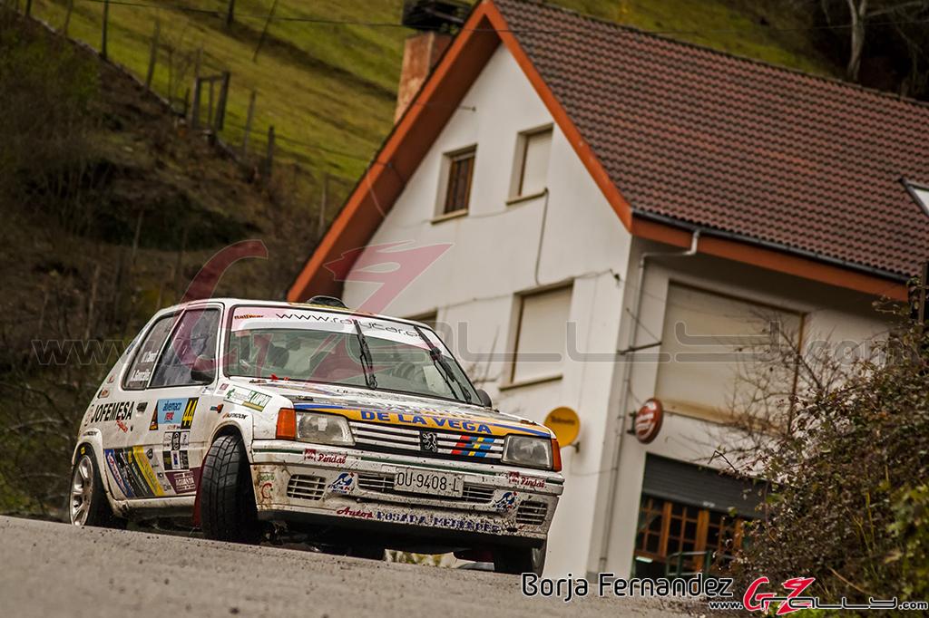 Rally_CangasDeNarcea_Fernandez_17_0020