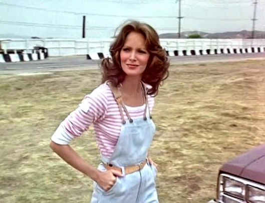 Jaclyn Smith (88)