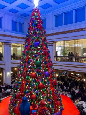 Macy's Chicago 2017 Christmas tree