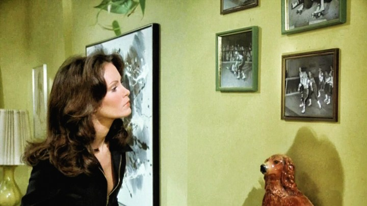 Jaclyn Smith (149)