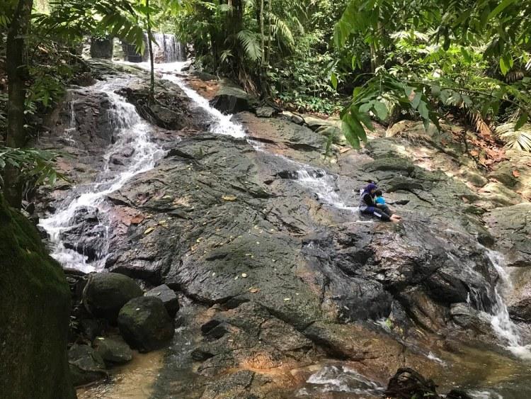 FRIM Selangor Forest Park