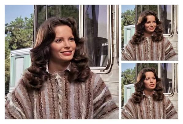 Jaclyn Smith (96)