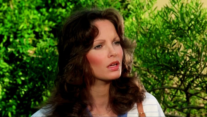 Jaclyn Smith (165)