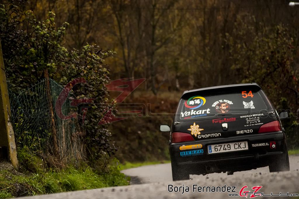 Rally_CangasDeNarcea_Fernandez_17_0033