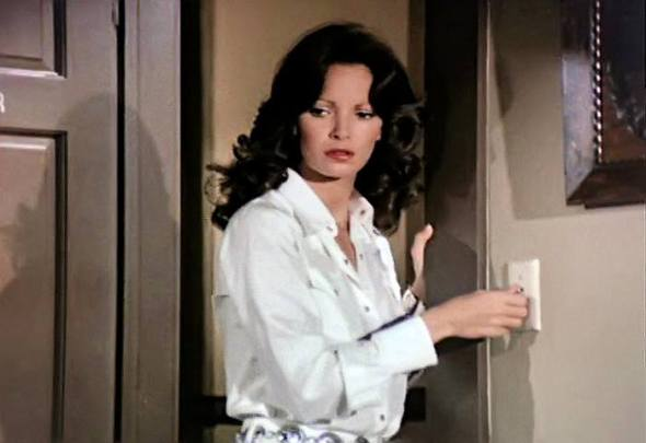 Jaclyn Smith (105)