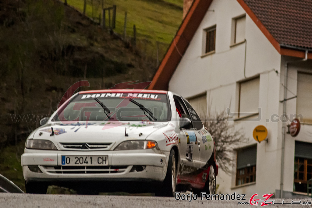 Rally_CangasDeNarcea_Fernandez_17_0042
