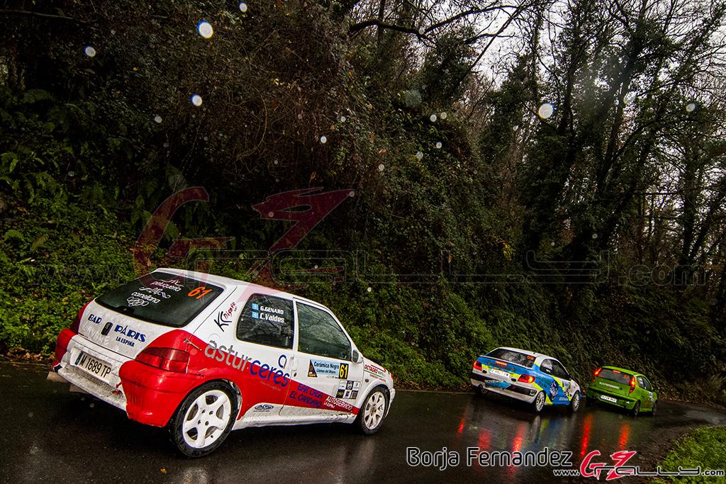 Rally_CangasDeNarcea_Fernandez_17_0044