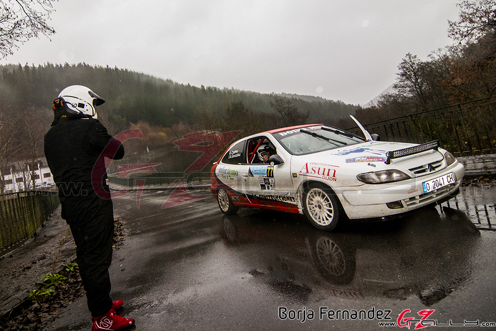 Rally_CangasDeNarcea_Fernandez_17_0002