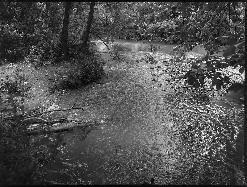tributary, French Broad River, Warren Wilson College, Black Mountain, North Carolina, Mamiya 645 Pro, mamiya sekof 80mm f-2.8, late spring 2017