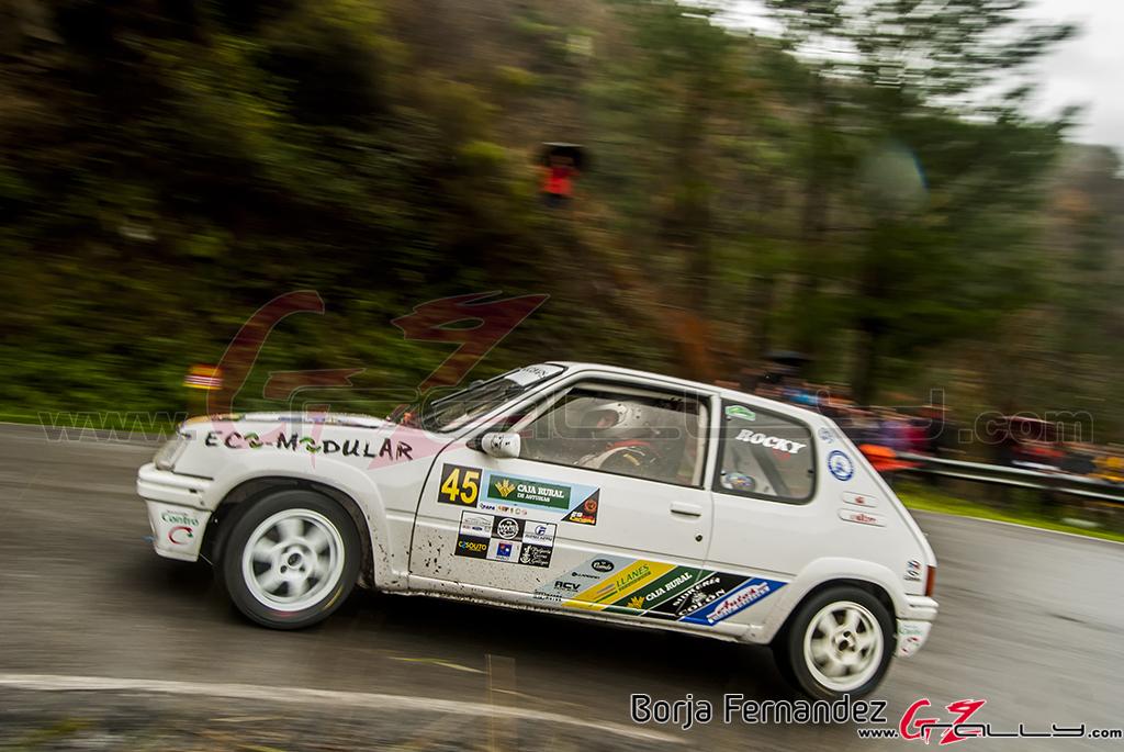 Rally_CangasDeNarcea_Fernandez_17_0036