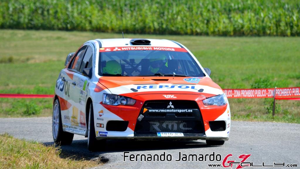53_rally_princesa_de_asturias_2016_-_fernando_jamardo_37_20160913_1598388202