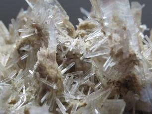 Mineral: Neo-formación de Yeso Selenita