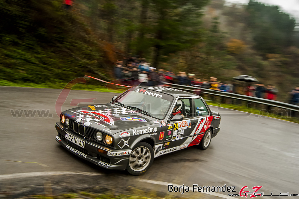Rally_CangasDeNarcea_Fernandez_17_0008