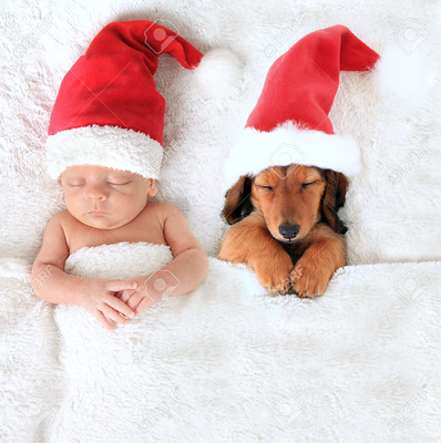 44819121-Sleeping-newborn-Christmas-baby-alongside-a-dachshund-puppy-wearing-Santa-hats--Stock-Photo