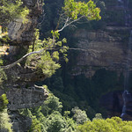 Viajefilos en Australia. Blue Mountains 022