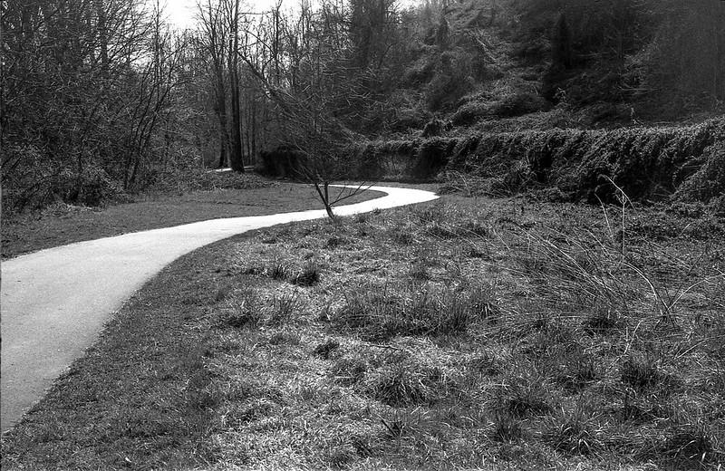 curvilinear pathway, into the sun, Hominy River Park, West Asheville, NC, Kodak Retina IIIc, Arista.Edu 200, Ilford Ilfosol 3, 3.8.18