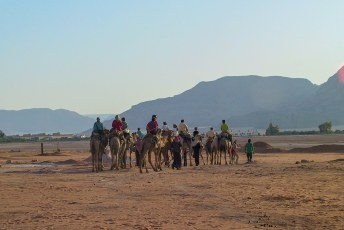De volgende ochtend konden we een tochtje op een kameel maken.