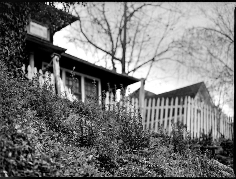 looking up, white picket fence, residence, hillside, backlit, North Asheville, NC, Mamiya 645 Pro, mamiya sekor 80mm F-2.8, 3.20.18