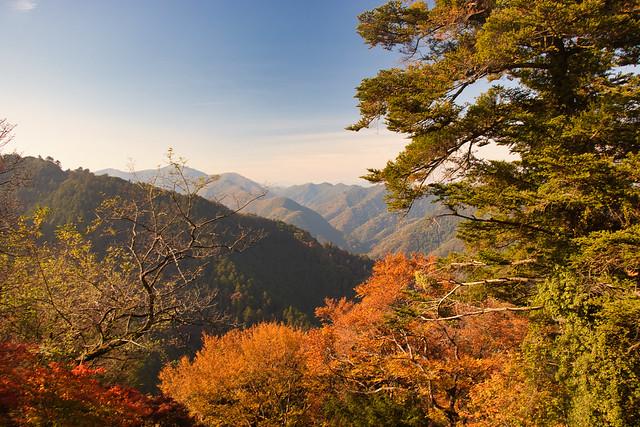 Mt Takao Views