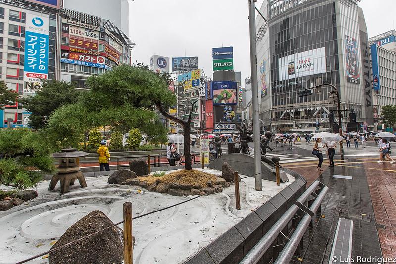 Jardín zen del parque de la estación
