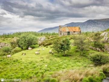 Ireland - 0924