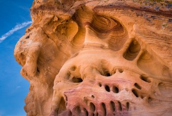 Two Faced - Gold Butte