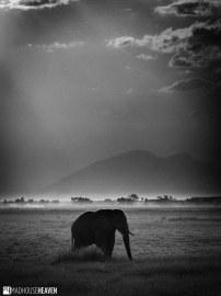 Kenya - 0069-HDR
