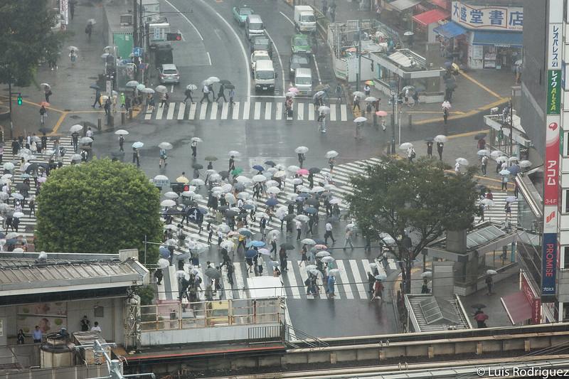 Vistas desde el mirador de Shibuya Hikarie
