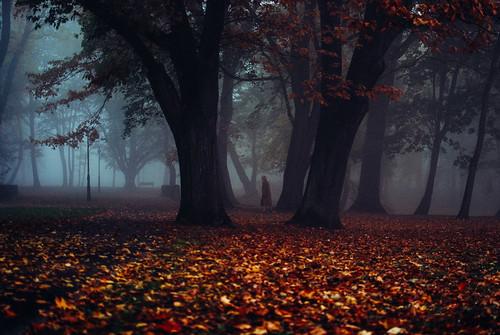 Enchanted Märchen
