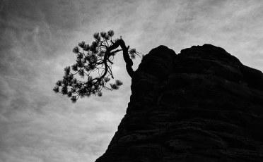 Hanging on near Checkerboard Mesa