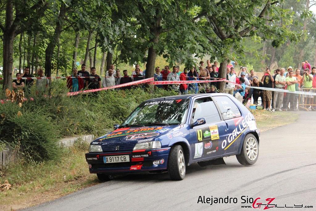 x_rally_sur_do_condado_138_20150307_1413524799