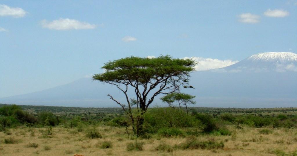 Kenia desde un autobus 02