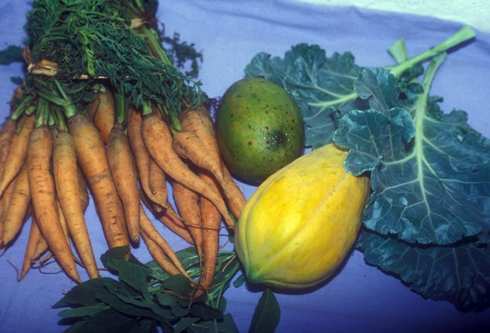 Dark green, leafy vegetables and fruit which have a high content of Vitamin A.