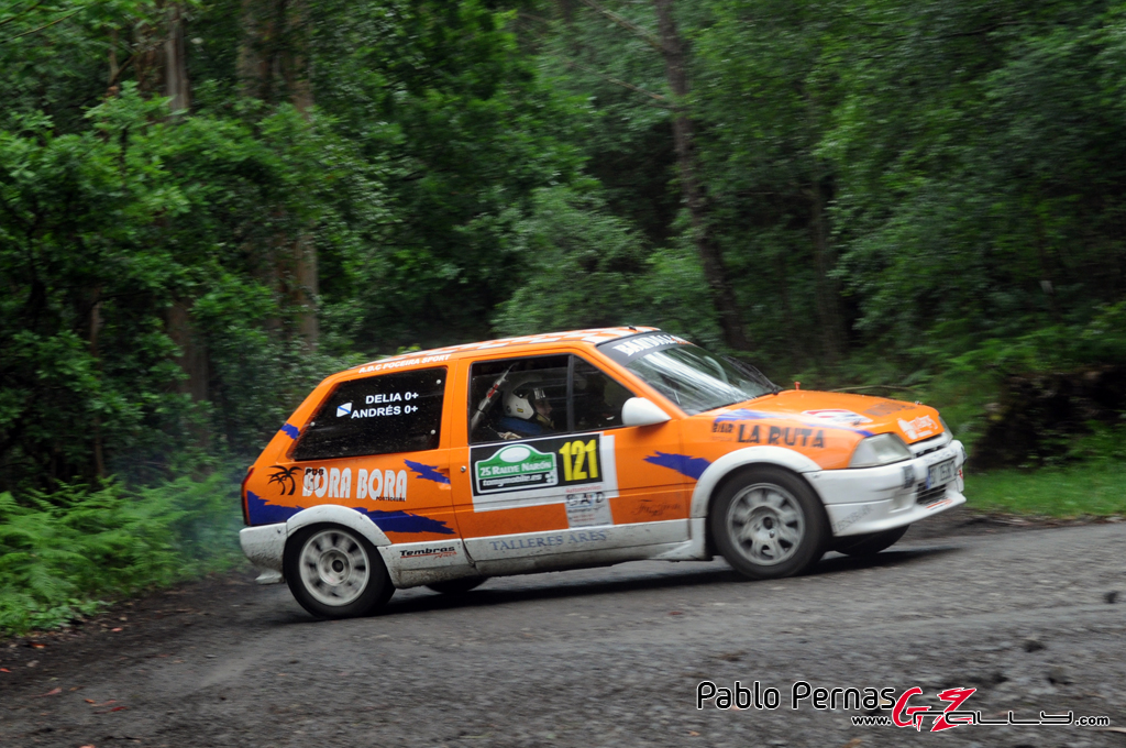 rally_de_naron_2012_-_paul_84_20150304_1115190175