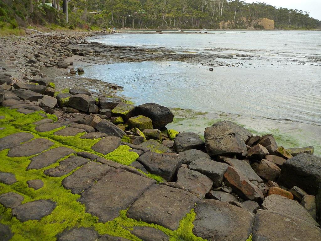Tessellated Pavement, Eaglehawk Neck, Tasmania