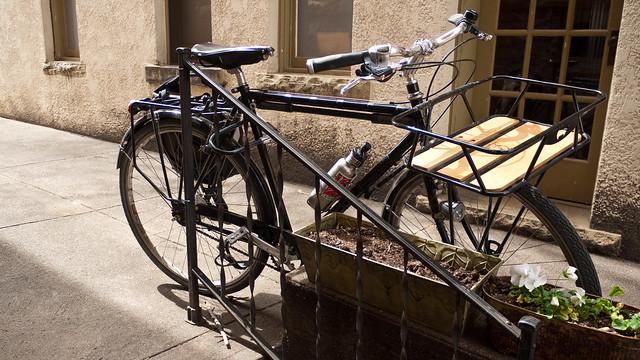 A City Bike in its Native Habitat