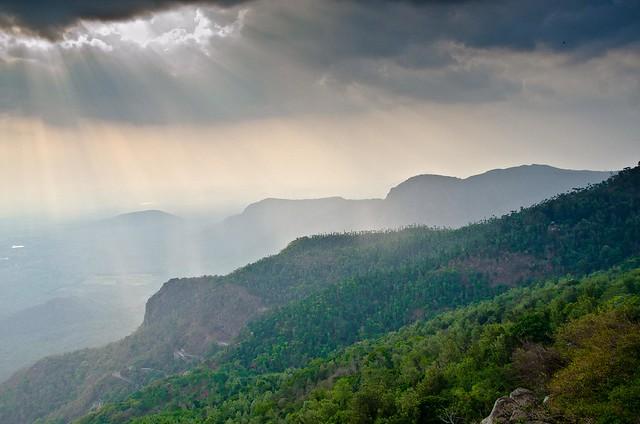 Yercaud  Hills