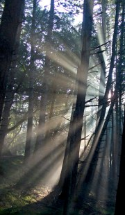 Crepuscular Rays, 1 of 3