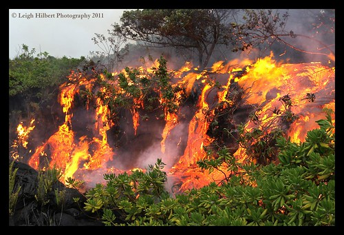 Jungle River of Fire