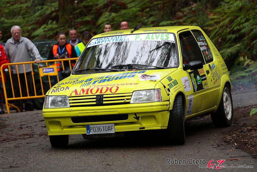 rally_sur_do_condado_2012_-_ruben_otero_264_20150304_1424076773