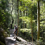 Viajefilos en Australia. Blue Mountains 008