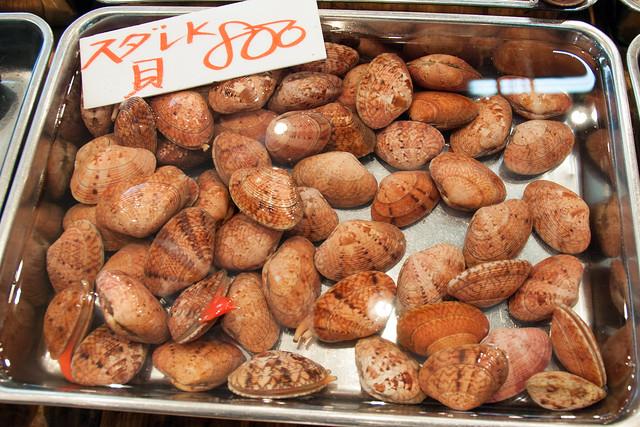 mollusks at the Tsukiji Fish Market