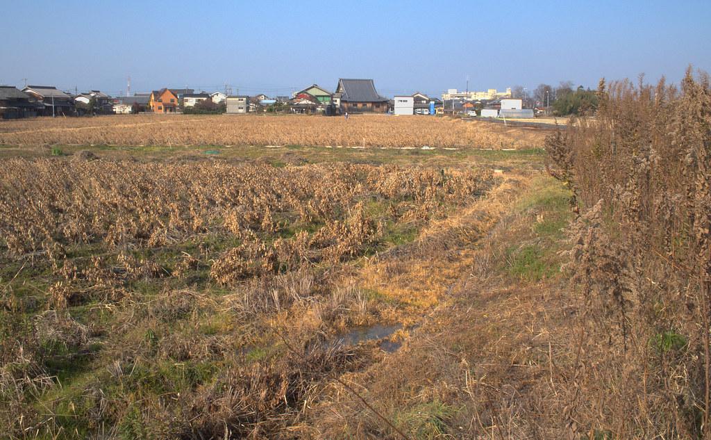 Field in Tsuji, Ritto City