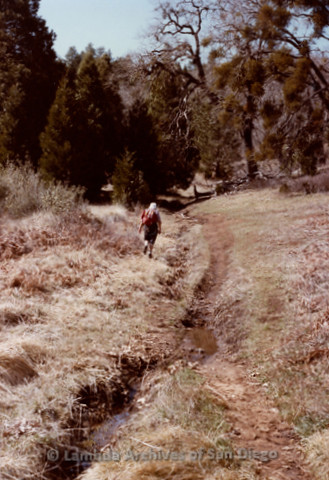P008.006m.r.t Cuyamaca Fire Roads 1983: Margaret Lewis scouts ahead on the trail