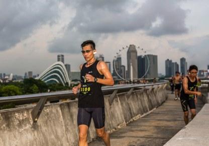 YOLO Run 2016