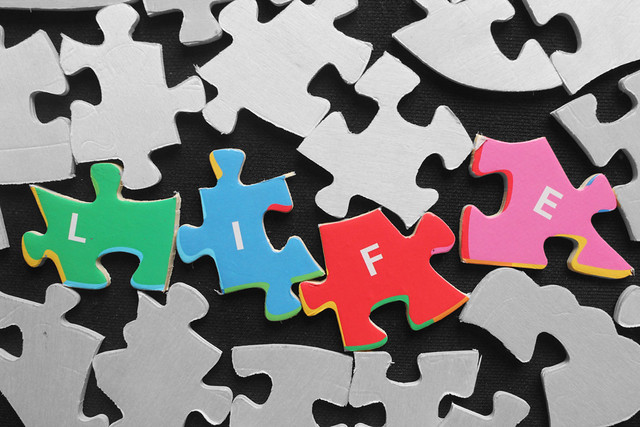 Life is a jigsaw puzzle