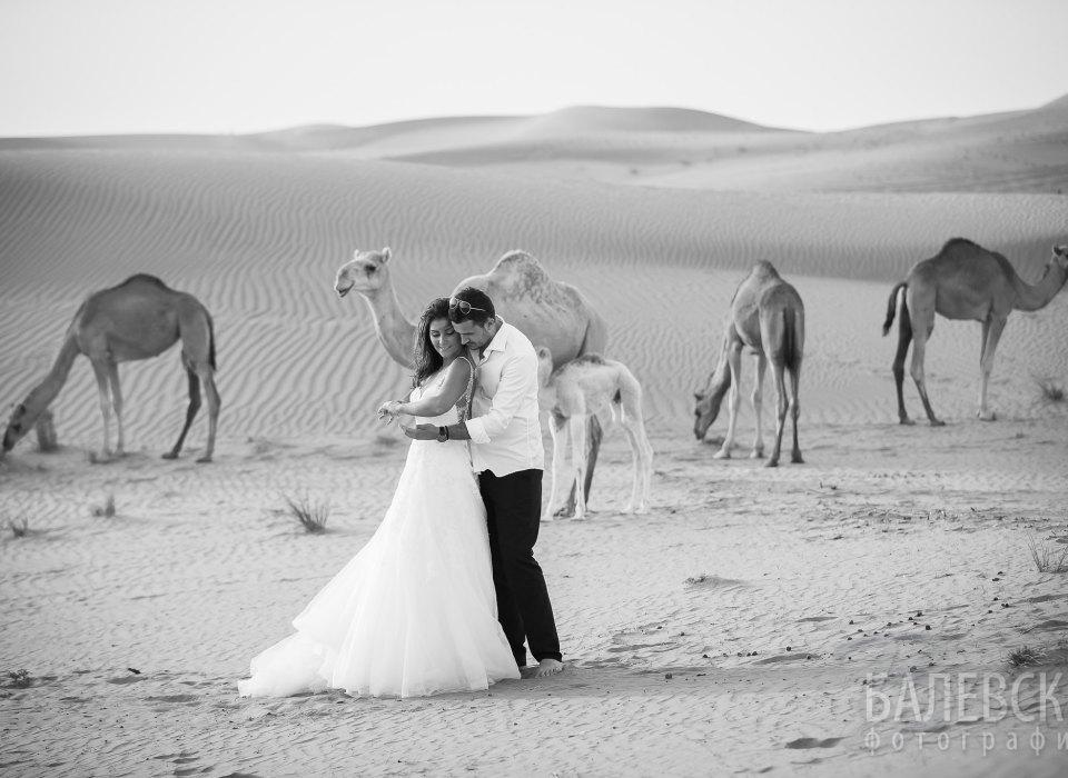 Lily_Vlady_Dubai-52